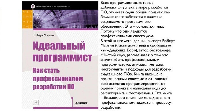 Описание книги Роберта Мартина